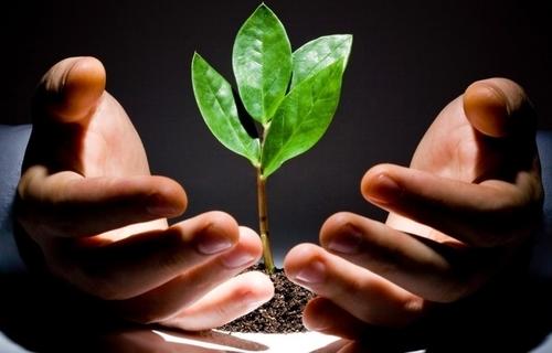 Thông tư hướng dẫn về các quy định đầu tư mới theo Luật đầu tư